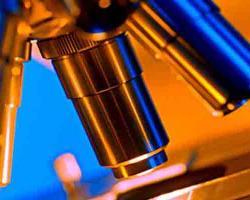 Scientific Imaging Scanning Slide