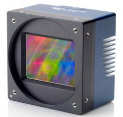 Teledyne Dalsa 86 Megapixel Global Shuttered 12 bit 16 FPS CMOS Camera