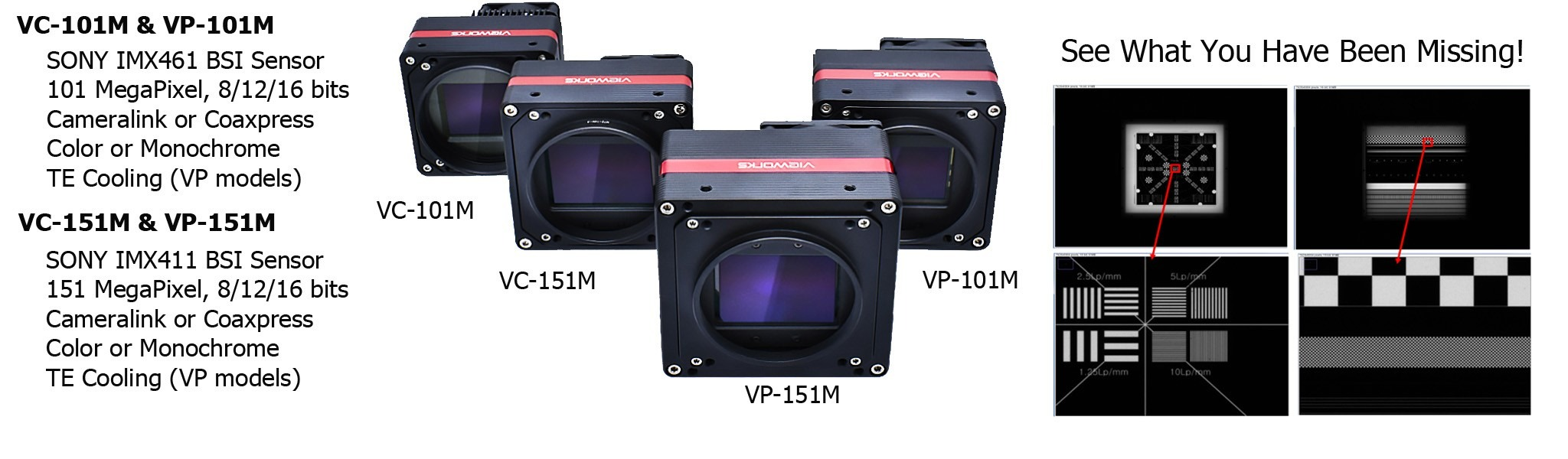Vieworks Ultra High Resolution 101-151mp Cameras